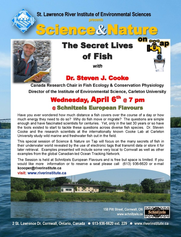 St lawrence river institute the secret lives of fish for Secret fish in tap tap fish